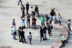 Dialoghi sul Caso - Piazza Maggiore 2012