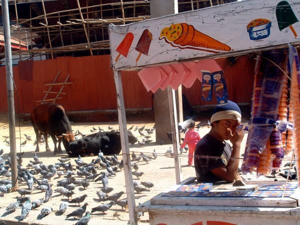 NOTIZIE INDIANE: Kathmandu